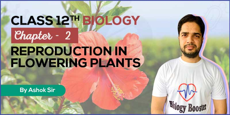 Chapter 2. Reproduction in flowering plants