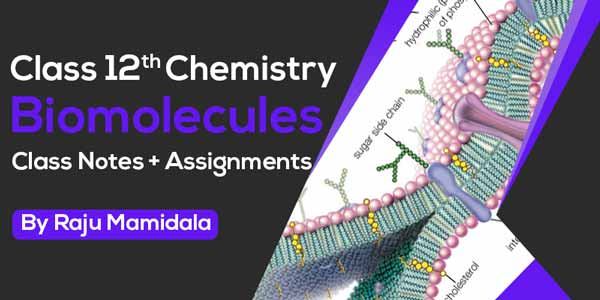 Class XII Chemistry - Biomolecules Class Notes + Assignments