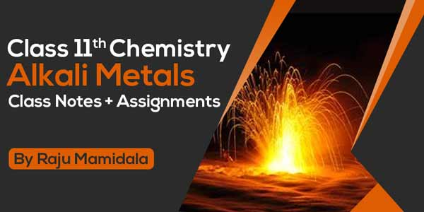 Class XI Chemistry - Alkali Metals Class Notes + Assignments