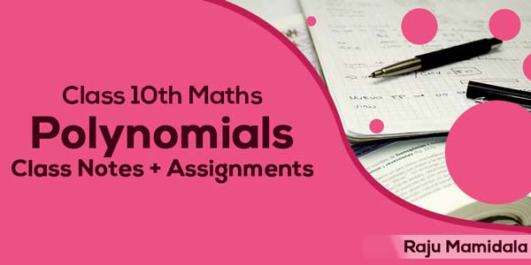 Class X CBSE Maths - Polynomials Class Notes with Assignments