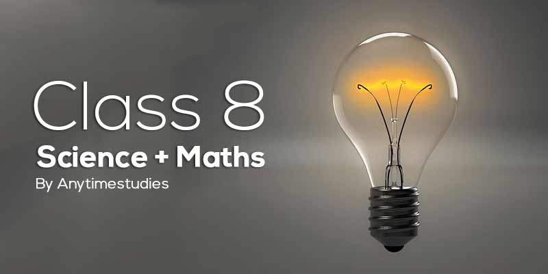 Anytimestudies Class 8 Science + Mathematics Animated Video Lecture in Hindi&English (DVD)