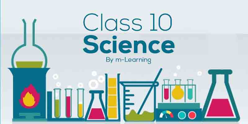 M Learning Offline Course for Class 10th - Science