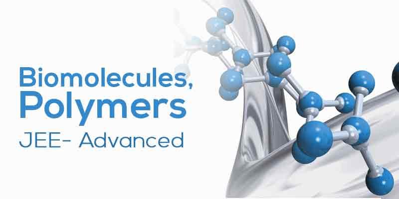 Biomolecules, Polymer, POC