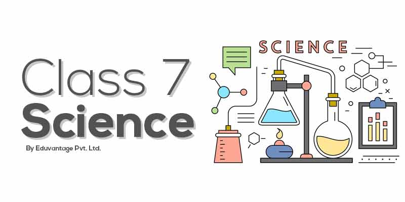 Class 7th Science