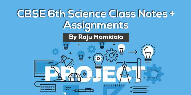 Class VI CBSE Science Complete Material along with Assignments
