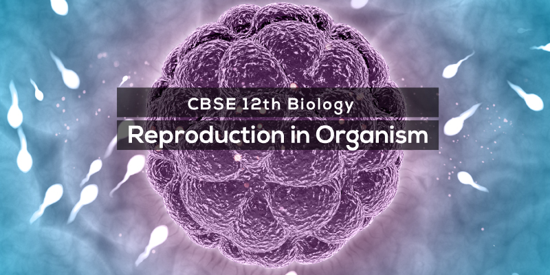 Reproduction of Organisms